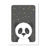 Panda postkort, uden tekst