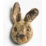 Dyretrofæ, Hare