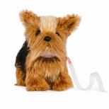 Yorkshire Terrier, bevægelige ben