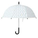 Katte Paraply