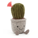 Amuseable Silly Sukulent, Cactus 19cm