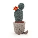 Amuseable Silly Succulent Cactus, 24 cm